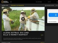 Aloha Extras: Dia and Ella's Honey Harvest